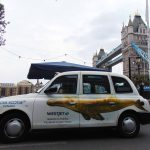 Nova Scotia WestJet Taxis London Sherbet Media